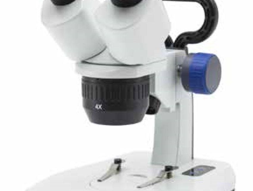 Il miglior microscopio composto biologico